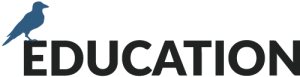 Stonehealth Education Logo