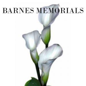 Barnes 300x300