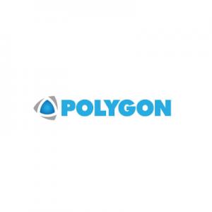 Polygon Group 300x300